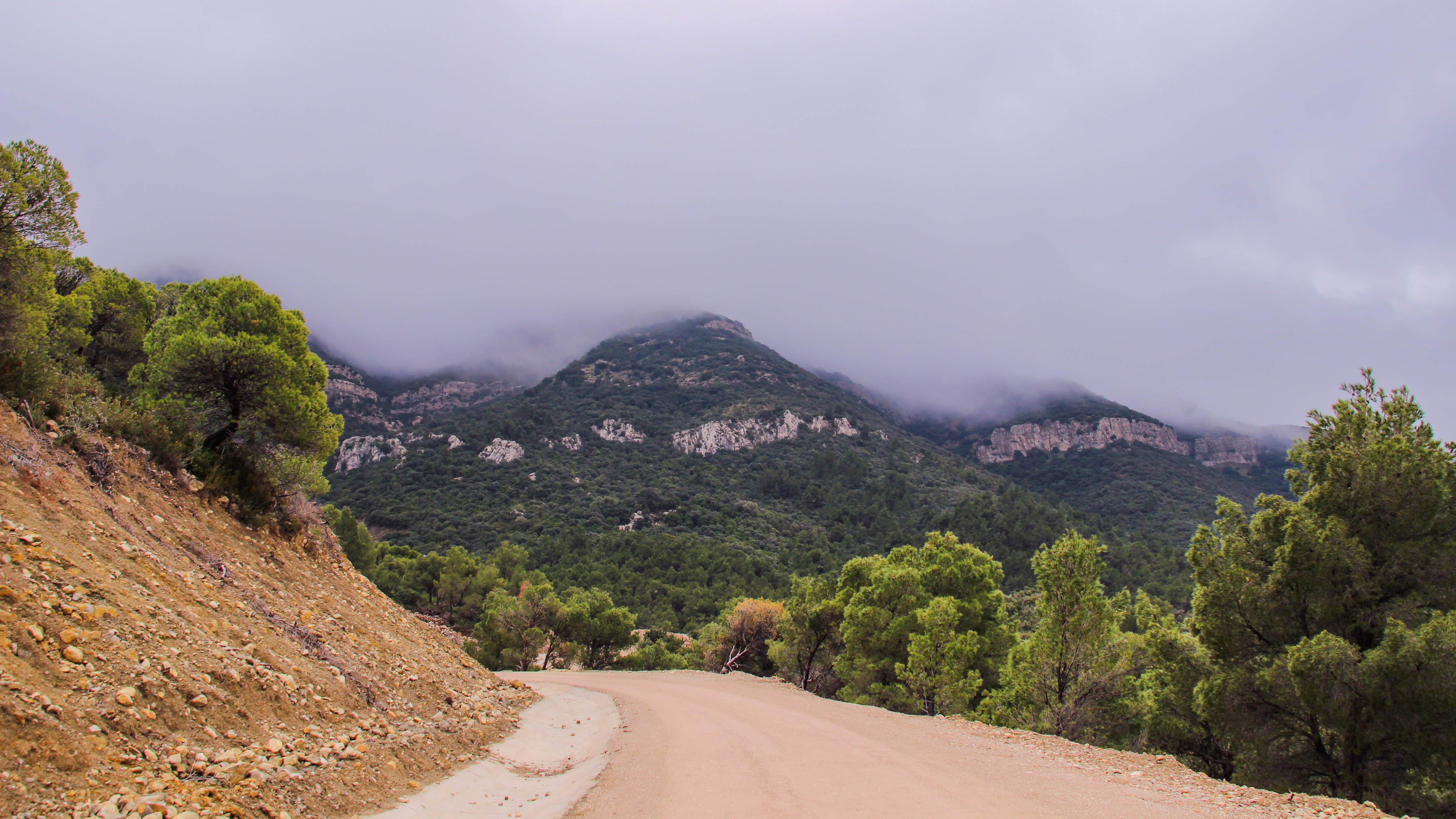 A view at the National Park of Djebel Serj in Siliana. (Wikimedia)