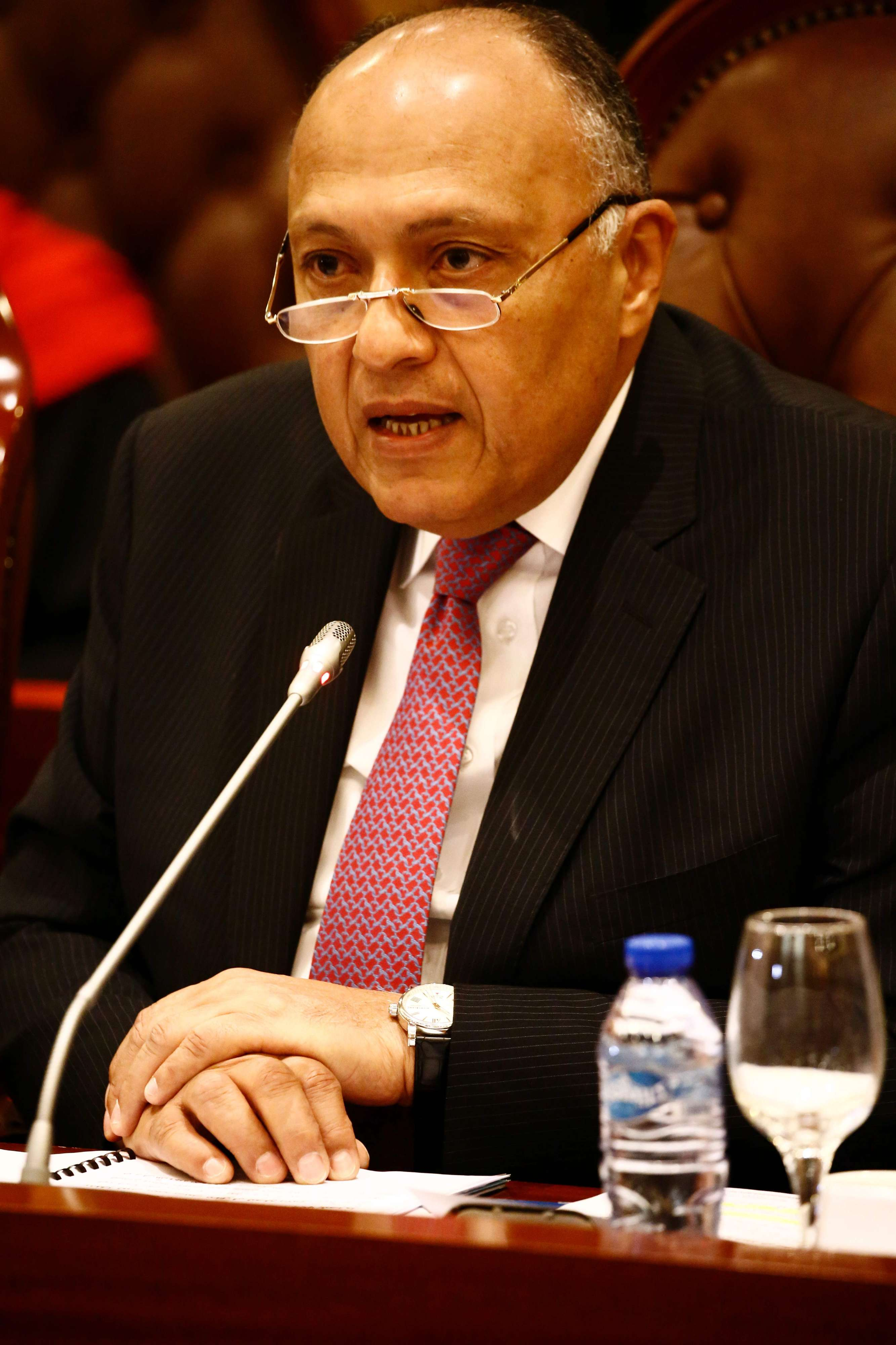 Egyptian Foreign Minister Sameh Shoukry speaks during a visit to Khartoum, last April. (AFP)