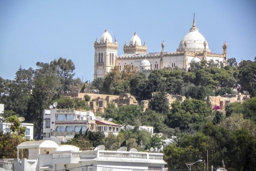A view of the Saint Louis Cathedral from down the Byrsa Hill. (The Acropolium of Carthage)