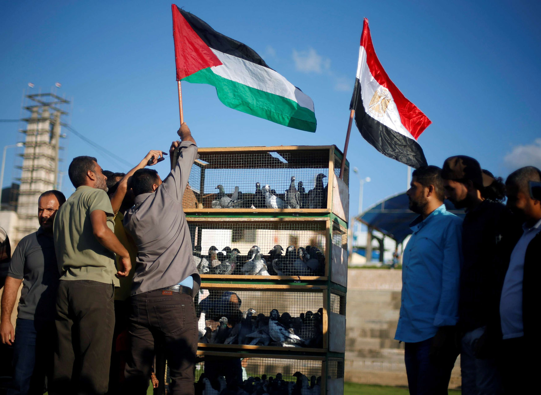 A man puts up a Palestinian flag over a cage before releasing pigeons to show support for reconciliation between rival factions Hamas and Fatah. (Reuters)