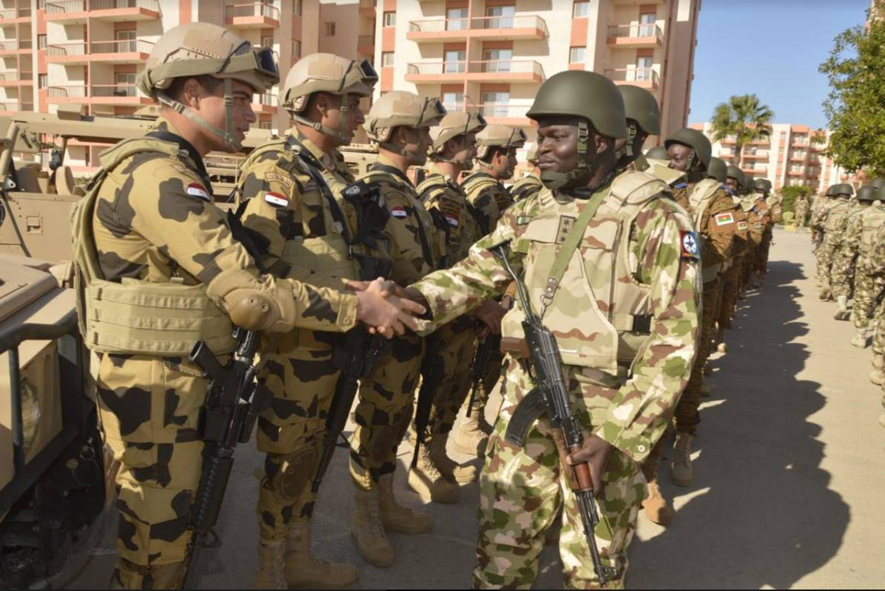 Useful expertise. Egyptian and African forces at the start of the  military exercises at Mohamed Naguib Military Base in Matrouh  governorate, December 9.  (Egyptian armed forces spokesman's Facebook account)