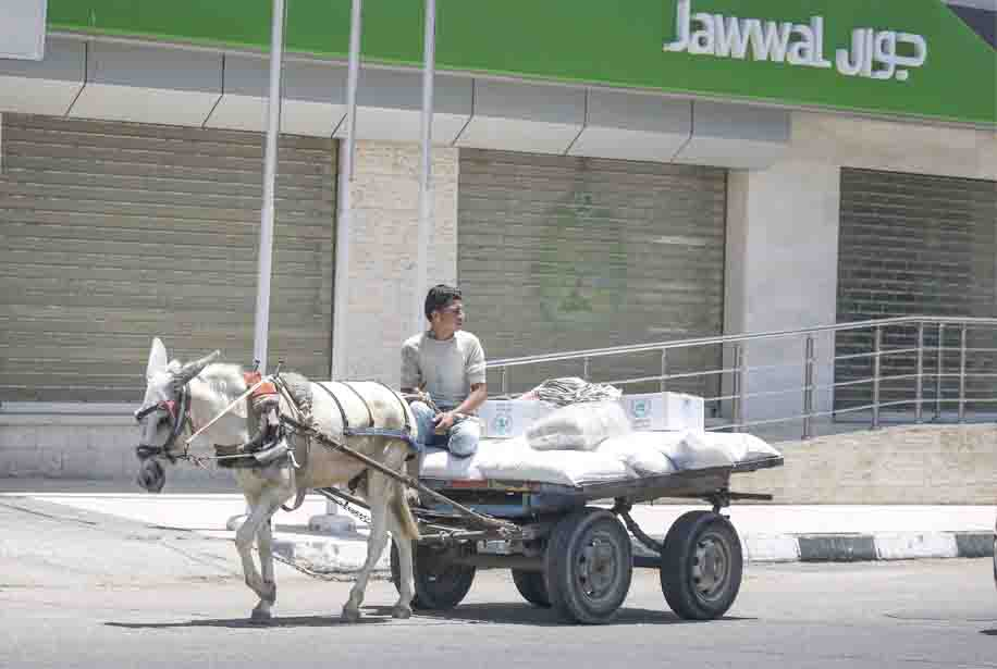 A Palestinian rides a cart carrying sacks of food aid provided by UNRWA in the town of Rafah, during a general strike against the US-led conference in Bahrain. (AFP)