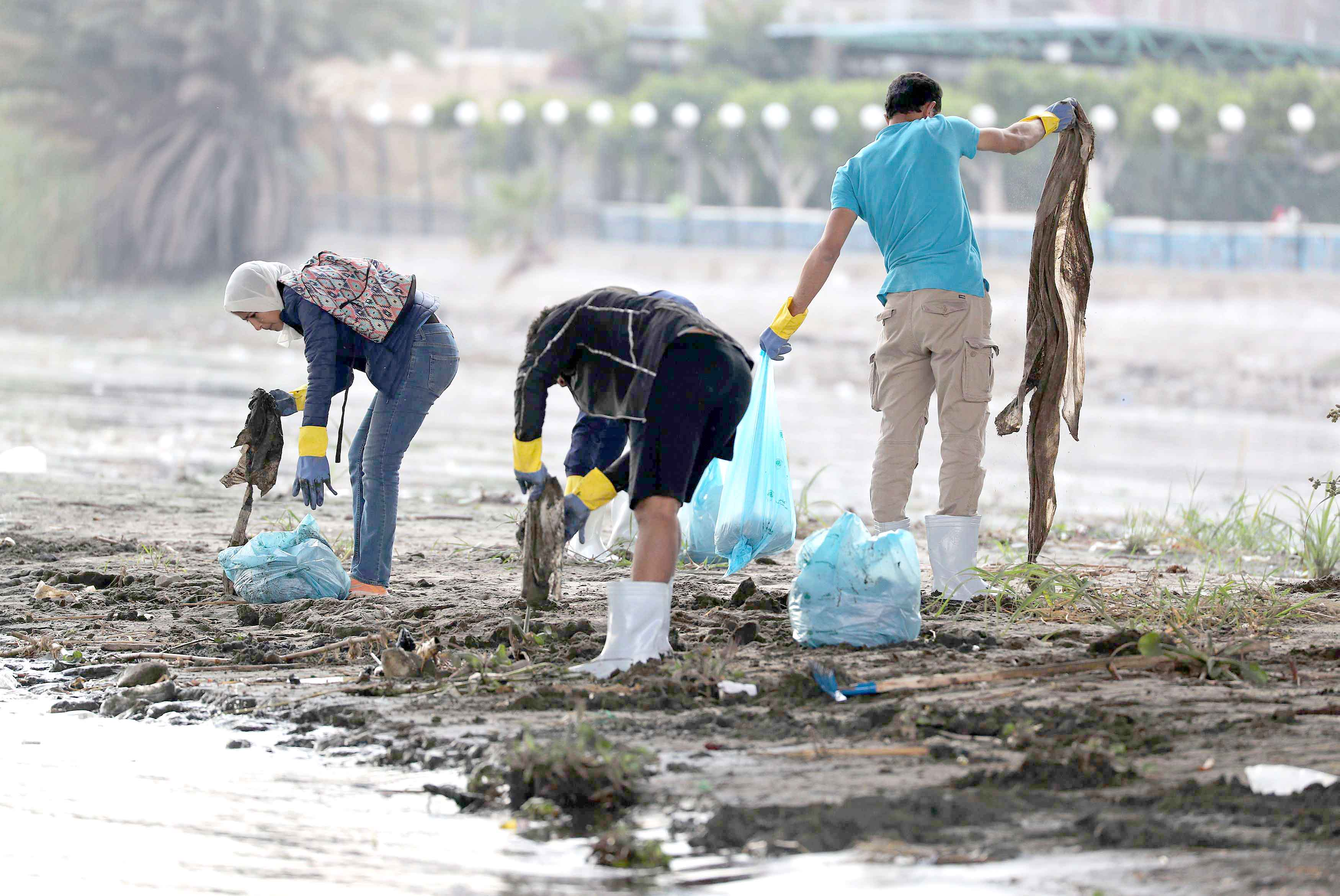 Choking the river. Egyptian volunteers collect waste and plastic as part of a campaign to clean up the Nile River.(Reuters)