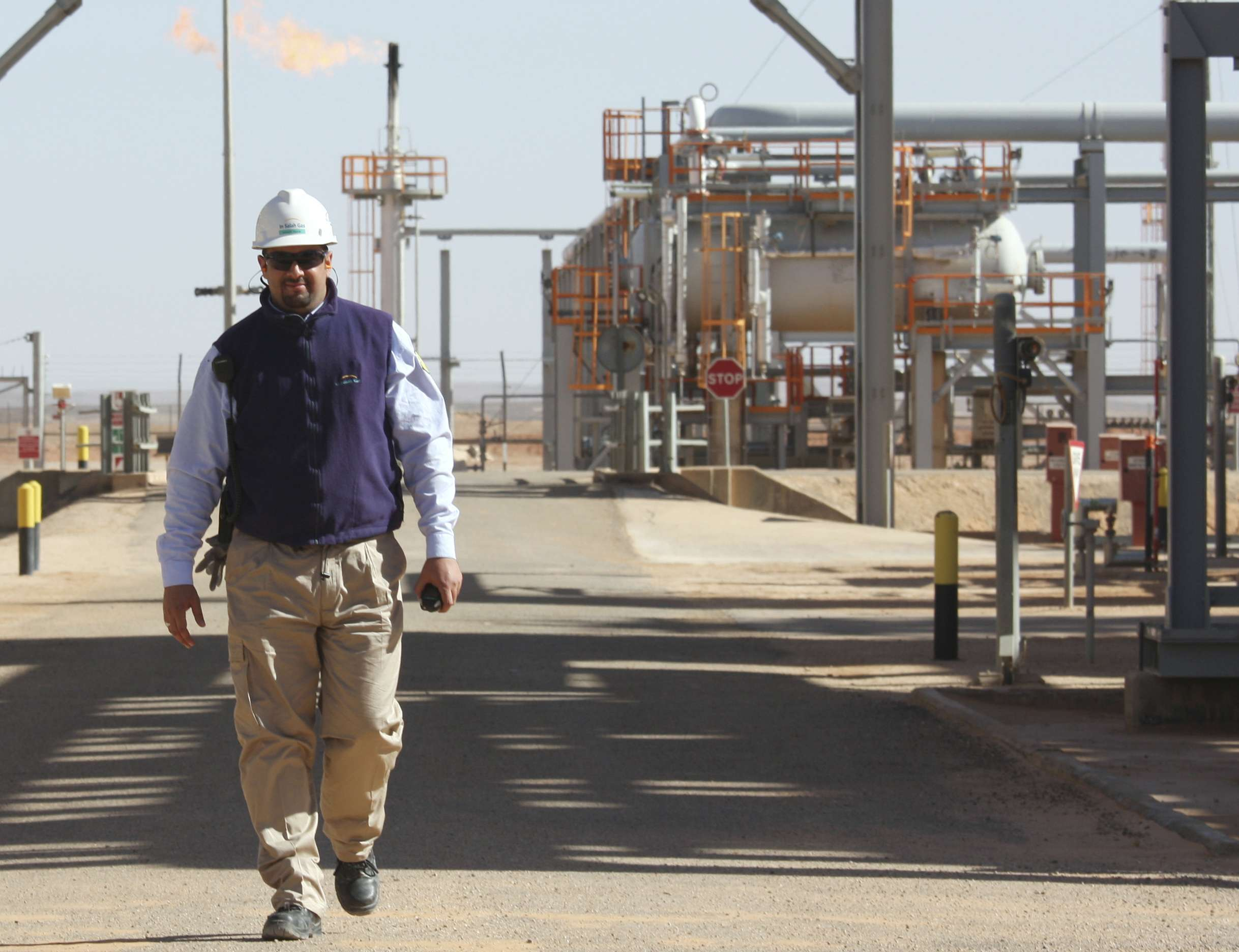 Key sector. A worker inspects the Krechba gas plant in Algeria's Sahara Desert, south of the capital Algiers. (AP)