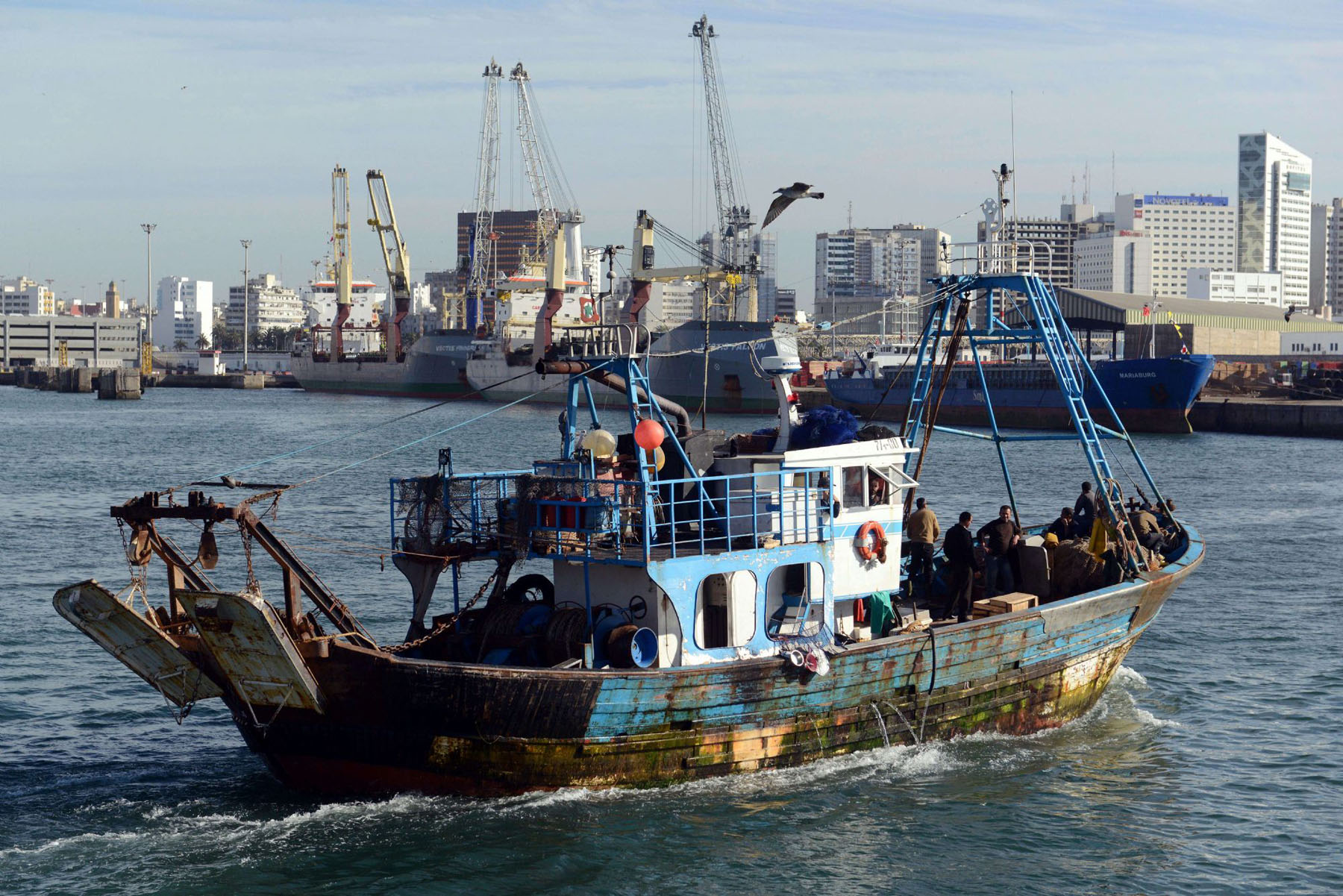 A fishing boat sails into the harbour of the economic capital of Morocco, Casablanca. (AFP)