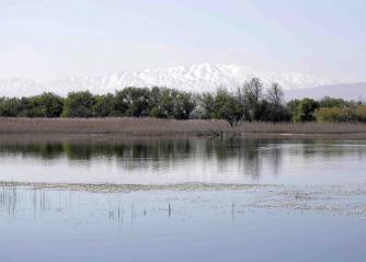 Mount Hermon as seen from the Ammiq wetlands in Lebanon's Bekaa Valley.(AFP)