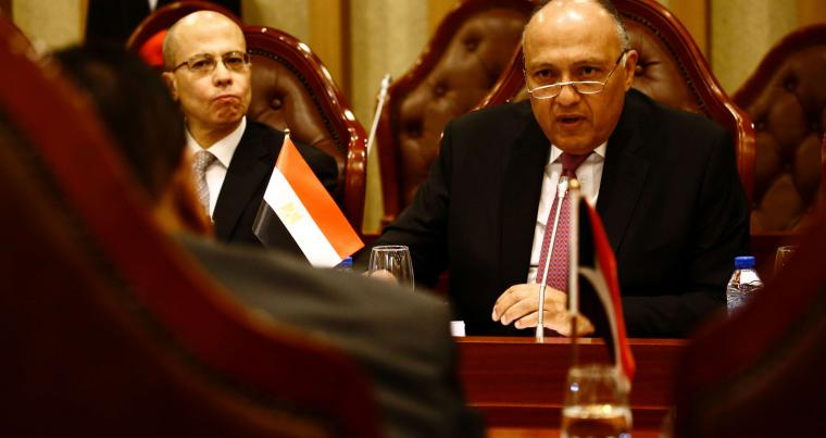 Egyptian Foreign Minister Sameh Shoukry speaks during a meeting in Khartoum, last April.  (AFP)