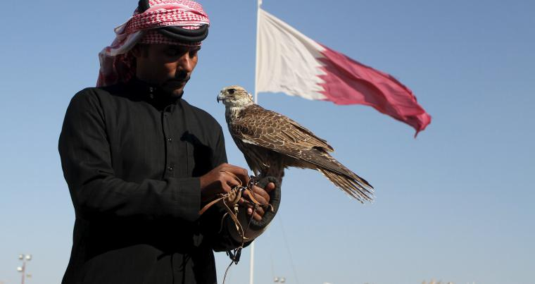 A Qatari man prepares his falcon to participate in a contest at the Qatar International Falcons and Hunting Festival at Sealine desert, in 2016. (Reuters)