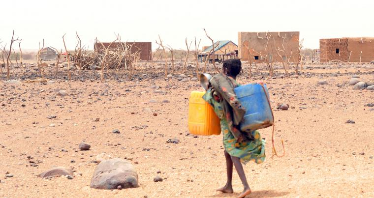 A girl carries cans to fill them with water in Katawane, near Nema in south-eastern Mauritania. (AFP)