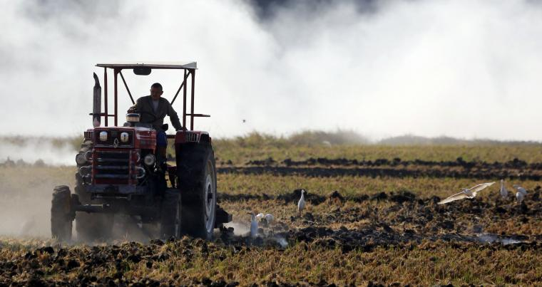 A farmer drives a tractor through smoke from burning rice straw in preparation for the next harvest, at a paddy field in the beginning of the agricultural road leading to Cairo November 1, 2014. (Reuters)