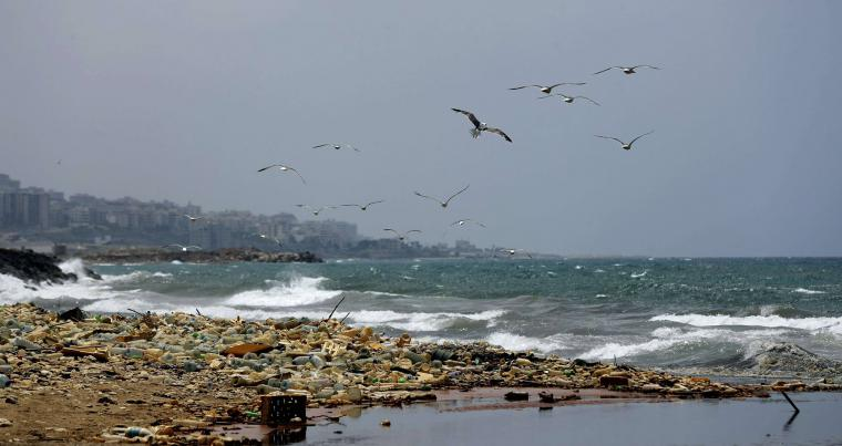 At critical levels. Seagulls search for food near a sewage discharge area next to piles of plastic bottles washed away by the water on the seaside of Ouzai in southern Beirut, on July 19.                                (AFP)